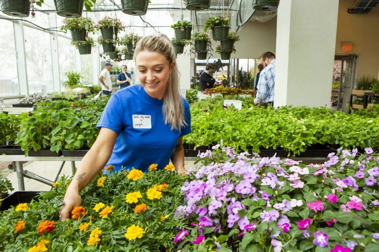 An agriculture student tending to flowers in a greenhouse