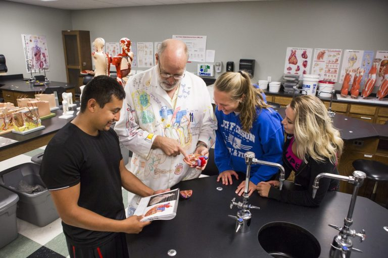 A biology instructor teaching showing students a model heart